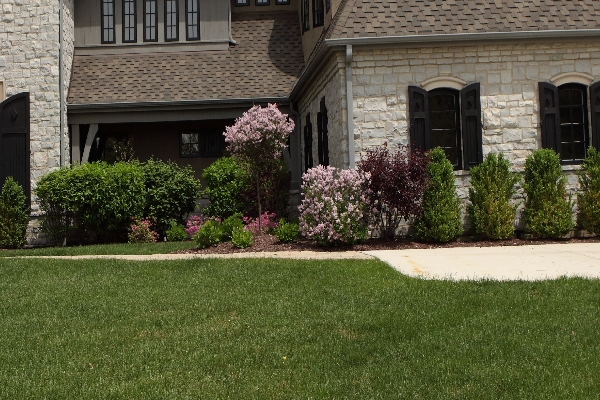 Image of Landscaping - Landscape Designs by Battaglia Homes, Custom Home Builder, Hinsdale, IL, 3