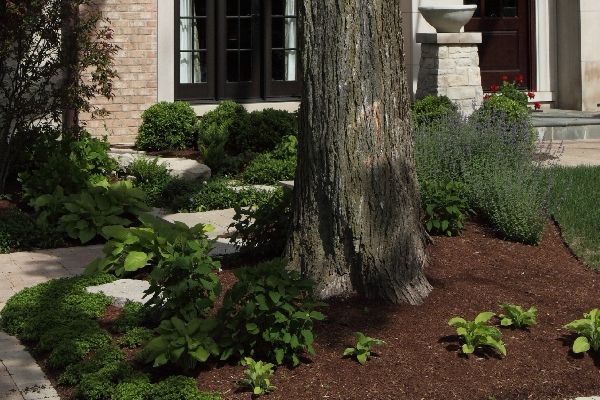 Image of Landscaping - Landscape Designs by Battaglia Homes, Custom Home Builder, Hinsdale, IL, 4