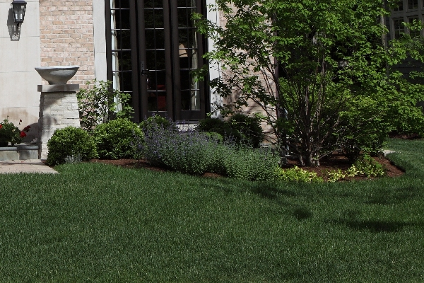 Image of Landscaping - Landscape Designs by Battaglia Homes, Custom Homes Builder, Hinsdale, IL, 1